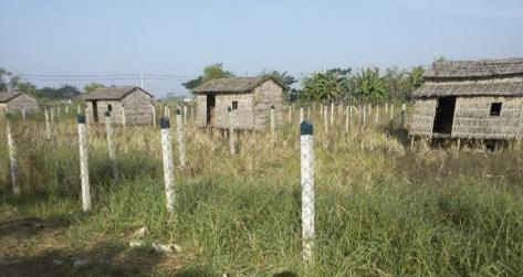 တွံတေးမြို့နယ် အိမ်ကြီး ကျေးရွာ အဓိက လမ်းမကြီးဘေးရှိ စပါးခင်းကွက်များ  Photo from San Thein, Gret Land Tenure Study Team, published 19 May 2016. Copyright LIFT, non-commercial.