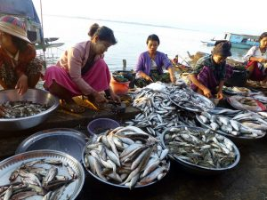 Local fish market in Ayeyarwady delta, Photo by Jharendu Pant, Flickr, taken 27 November 2012. Licensed under CC BY-NC-ND 2.0.